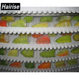 Hairise Nahrungsmittelgrad-vertikales gewundenes Förderanlagen-System