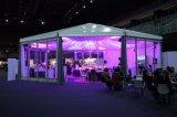 Alumininum e PVC con le tende di Famiry di esagono del giardino della parete di vetro