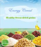 Prix usine direct de céréale d'énergie de remplacement de repas