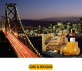 Природный газ Genset и комплект генератора Biogas тепловозный