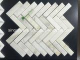 Het Witte Marmeren Mozaïek van Calacatta, Rond Marmeren Mozaïek
