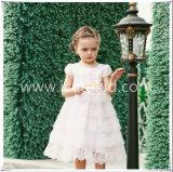熱い販売の長いフラワー・ガールの服の子供は女の子のためのパーティー向きのドレスに着せる