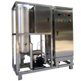 Générateur de l'ozone de l'eau pour le traitement des eaux de transformation de fruits