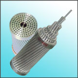 Leider ASTM B232 StandaardACSR