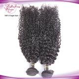 les meilleures trames malaisiennes bouclées crépues de vente des cheveux humains 8A