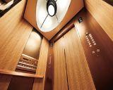 Passagier-Höhenruder mit kompaktem Raum von China