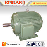 Motor elétrico trifásico de ferro de molde da série Y4