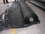 Geomax Geogrid in Tweeassige die Richting voor de Bestrating van het Asfalt wordt gebruikt