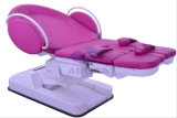 AG-C101A5 최상 호화스러운 다기능 전기 산과 침대