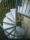 Escadaria ao ar livre da espiral do aço inoxidável