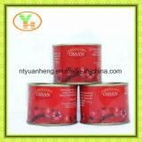 Molho de tomate em conserva vendido quente da China