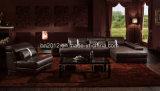 Hauptmöbel-Freizeit-Leder-Sofa (SBO-3921)