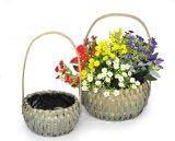 Cesta de la flor de la astilla para la decoración de interior y al aire libre