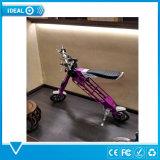 """10 """"電気バイク浜の雪の自転車のEバイク350Wを折る新しい脂肪質のタイヤ"""