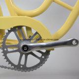 2017 신제품 고품질 도시 자전거 (CTB2)
