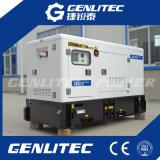 13-250kVA de China Weichai Ricardo generador diesel insonoro