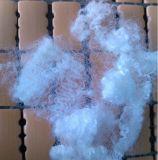 Polyester creux hautement élastique de 15dx64 Hcs pour les paliers remplissants de vide