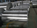 Il ferro galvanizzato tuffato caldo principale e d'acciaio professionali/hanno galvanizzato la bobina della lamiera sottile/del ferro