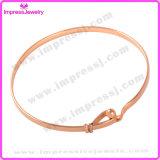 De Armbanden & Armbanden Pulseira Feminina van het Roestvrij staal van de Juwelen van de manier