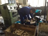 Replacemengの幼虫の掘削機Cat325cのための油圧ピストン・ポンプの部品