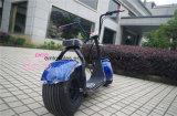 Motociclo elettrico delle rotelle elettriche adulte senza spazzola del motorino 2 di Citycoco 1000W di mobilità della città