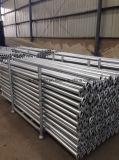 Registro d'acciaio dell'armatura di Cuplock del materiale da costruzione del TUFFO caldo/orizzontale galvanizzati