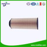 Elemento del filtro dalla cartuccia & del filtro dell'olio per l'automobile E21HD74 di Scania