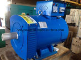 熱い販売AC交流発電機の発電機の工場中国製