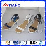 Cinghia della caviglia del gladiatore delle donne con i sandali piani degli inarcamenti registrabili (TNK50033)