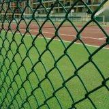 Ограждать звена цепи PVC отверстия диаманта датчика спортивной площадки 9 школы Coated