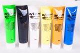 100ml 24 Verf van de Kunst van het Propyleen van Kleuren de acryl