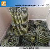 Ring-Ladeplatten-Nägel galvanisierten heiße eingetauchte geläufige Nägel