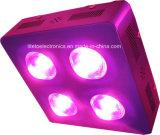 Voller Spektrum 300W PFEILER LED wachsen für Pfeffer-/Tomate-Wachstum hell
