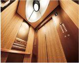 Passagier-Höhenruder vom chinesischen Hersteller