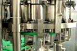 Chaîne de production carbonatée de boissons de la capacité 3000-5000
