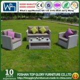 El nuevo diseño de aluminio PE ratán y muebles de jardín, muebles de jardín de ratán Ocio Sofá (TG-8002)