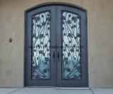 Шикарная дверь входа утюга Antique бросания конструкции с листьями