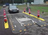 Het auto Digitale Aftasten van de Lijn onder het Systeem van de Inspectie van het Voertuig met de Erkenning van de Plaat van Auto's