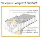 """Panneaux """"sandwich"""" de papier environnementaux de nid d'abeilles pour la salle d'opération ou les laboratoires"""