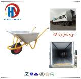 Rad-Eber des Russland-Hochleistungsaufbau-Wb5238
