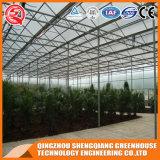 상업적인 농업 강철 구조물 구렁 강화 유리 온실