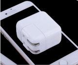 Lader van de Telefoon van de Reis van de Adapter van de Lader USB de Mobiele voor iPad