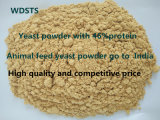 Feed animal Yeast Feed pour Poultry Feed Export Standard