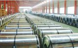 Hoja de acero galvanizada prepintada de PPGI en bobinas