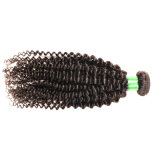 等級7Aのブラジルの巻き毛のバージンの毛のねじれた巻き毛のバージンの毛3PCS/のロットの加工されていないRemyの人間の毛髪の織り方のアフリカのねじれたカーリーヘアー