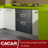 Gabinete de cozinha à moda da laca do revestimento do cozimento da forma da manhã da mola (CAIK-03)