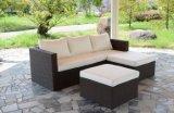 Комплект мебели сада софы напольной софы ротанга Wicker