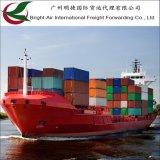 Frete de mar ultramarino do transporte do agente de transmissão do Brilhante-Ar de China a no mundo inteiro