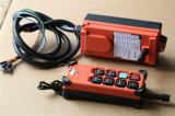 La commande F21-6s de Micromote-Radio pour la grue de levier, remettent la grue à chaînes et la grue d'air