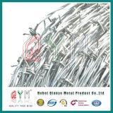 Großverkauf galvanisierter Stacheldraht-Preis pro Rollenziehharmonika-Rasiermesser-Stacheldraht